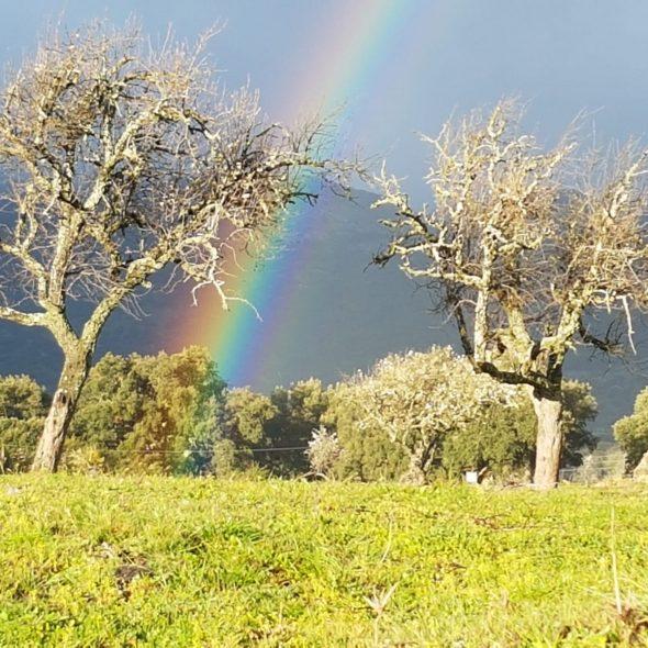 Luces y colores en la sierra